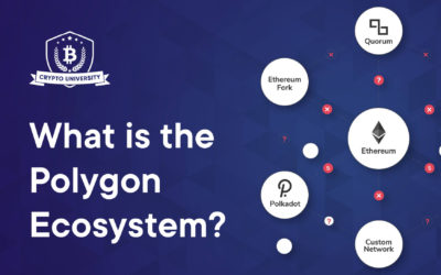 What is the Polygon ecosystem?