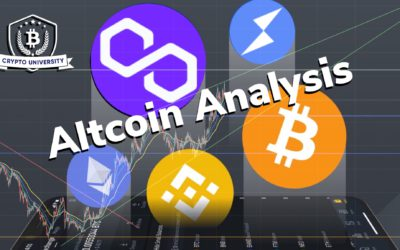 Altcoin Analysis August 17th 2021